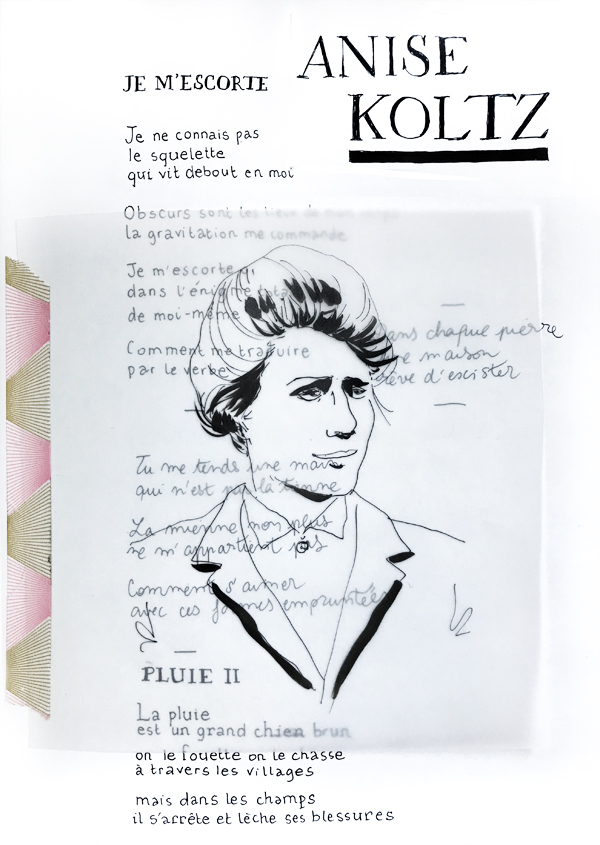 24-KOLTZ-test copie