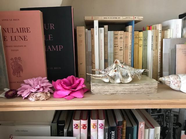 diglee livres